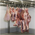Cold-Storage-of-Fresh-Meat-Glacier-Coldrooms